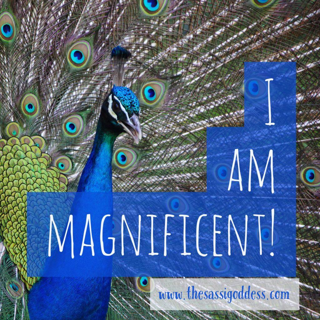 www.thesassigoddess.com I am magnificent!